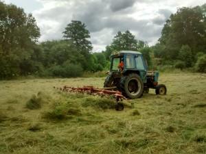 hayturningsmall